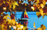 A sailor makes his way past some trees that have changed at Cherry Creek Reservoir Monday...