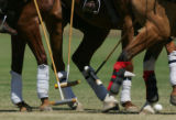 Polo players fight for possession in the first match at the 20th Annual Denver Polo Classic,...