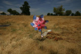 A whirly toy is all that is blooming at Olinger Highland Mortuary & Cemetery, in Thornton...