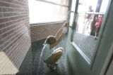 Makenna Zgolmann, (cq), plays door stop for her fellow students returning to class from the...