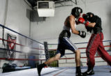 Robert Rodriguez,17,left, lands a punch on 17-0 (KO-11) Welerweight fighter Mike Alvarado, left,...