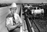 W.D. Farr stands at the Farr Feedlot in east Greeley in the mid 1980's.  Greeley Tribune File Photo