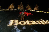 A child gets up close to the lights at the Denver Botanic Gardens in Denver, Colo. on Wednesday,...