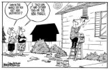 Drew Litton cartoon on NB Finals. For June 12, 2007, paper. Paint the House