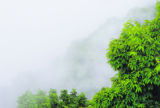 Fog is regularly present during the pre-monsoon season in eastern Nepal. In some places, fog is...