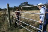 Lynn and Joel Hefley move a gate on their 80-acre in Blanchard, Okla., Friday, October 26, 2007....