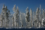 New snow blankets trees near Dillon Reservoir, as the Ten Mile Range appears above the fog covered...
