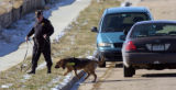 A dog on loan from the Jefferson County Sheriff's Dept. helps Aurora Police conduct a search for ...