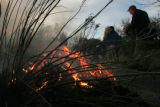 Employees of the Denver Botanic Gardens, keep watch over a controlled burn of  Sacred Earth Garden...