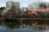 Employees of the Denver Botanic Gardens, keep watch over a controlled burn of Plains Garden...