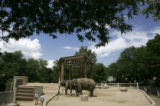 Asian elephants Dolly, left, and Mimi, right wait to be fed at the Denver Zoo in Denver, Colo., on...