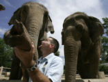 Pachyderm Keeper Dave Johnson looks up at Asian elephants Dolly, left, and Mimi, right, at the...