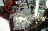 Bags full of millions of dollars worth of silver coins recovered from the wreck. Marine...
