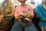 BG_0149 Nancy Thornton, 72, of Boulder, and a Joan Fitz-Gerald supporter, knits while three...