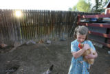 The youngest Johnson sibling, Christina, 7, holds a chicken in the chicken and duck coop after...