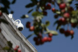 A surveillance camera looks down on Civic Center Park, Wednesday afternoon, October 1, 2008,...