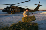 Jack Martin loads hay onto a waiting Army Blackhawk helicopter in Lamar, Colorado. National Guard...