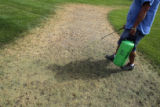 DM2287  Jose Palma, operations supervisor for Civic Center Park, sprays a green colored fertilizer...