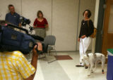 Sue Egger (cq) walks into a press conference with Sally (cq) , a Saluki dog from Kuwait  at the...