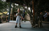 Jason Balcom Johnson, 19 months of Northglen is delighted to look at the fairy tree where Makai...