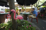 A lawn decoration flamingo is chained down in the center of the patio where Brooke and Steven...