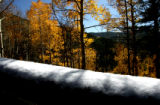 Snow covers the top of a bench on Colorado 103 near Mount Evans, Monday afternoon, October 4,...