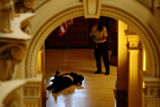 An armed man was shot to death by a Colorado state trooper outside the governor's office at the...
