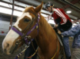 DM0037  Michael Meeks, 24, climbs aboard Poe the horse as he rides at the Praying Hands Ranch in...