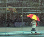 A commuter with her reflection makes their way to work near Colfax Avenue and Broadway Street...