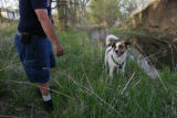 DM0245  Terry Smith takes his son's dog Dobie for a walk along Bear Creek just blocks away from...