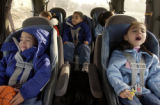 Denver, Colo.12/28/04-- The DeLoera quintuplets, born on May 13, 2001, and now 3 1/2,  are buckled...