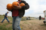 What goes up must come down, so let it fly during Jack-O-Launch at PumpkinFest in Aurora. If ya...