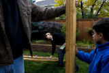 Jason Williamson (cq) reaches to grab a board used for his sukkah Sunday afternoon October 12,...