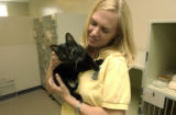 Kristina Vourax(cq), Communications Manager, holds Angel, a black female one year old cat. This is...
