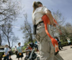 Zookeeper Dawn Cummings at the Denver Zoo carries one of  50 flamingos being moved from their...