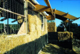 Martin Straw Bale home, barrett studio architects