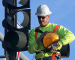 Grand Junction Traffic Department Tom Lanam replaces traffic lights at 5th & Grand in Grand...