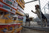 DLM1526  Two dogs bark as cases of donated pet food are dropped off at the Colorado Humane Society...