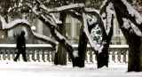 The trees in Civic Center Park have snow on them Thursday morning, March 29, 2007, in Denver. The...