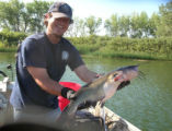 Division of Wildlife biologist Ben Swigle grins and grips a channel catfish. Old Whiskers is one...