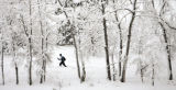 Jeanette Burney (cq) of south Boulder cross country skis with her husband, Dennis Burney (cq), at...