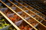 Some of the hundreds of flies available at the Arkansas River Fly Shop and Guide Service store in...