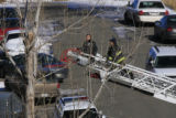 DM0240   Denver Police use a firetruck to inspect the branches of a tree that grows in the gulch...