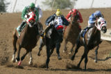 Horses turn the corner into the homestretch at Arapahoe Park Racetrack in Aurora. Monday July 9,...
