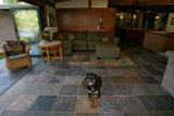 Priscilla, the family dog, lays on the slate floor of the solarium, Monday evening, July 2, 2007,...