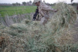04/10/2005 Iraq-SPC Salvador Mathewson (cq-Mathewson), 22, searches the roadside after the Humvee...