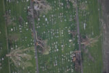 JOE509 Aerial view on Friday morning, May 23, 2008 of parts of Windsor, Colo., that was hit by a...