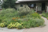 "Jim and Dorothy Borland's front yard in west Denver is what they like to call ""Beyond..."