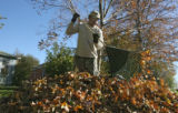 Ruben Lares (cq), of Clean Cut Inc., clears leaves from homes on Syracuse St, Tuesday afternoon,...