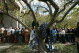 WEB ONLY People crowd Civic Center Park to see Dem. Presidential candidate Barack Obama at an...